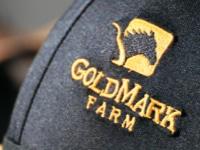 GoldMark-bh